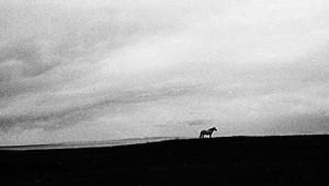 Immagini da terre lontane #2