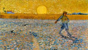 Il sole di Arles